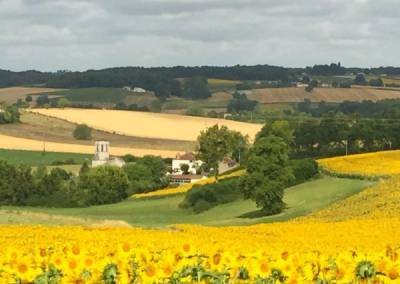 View of Sousmoulins & the fields of sunflowers